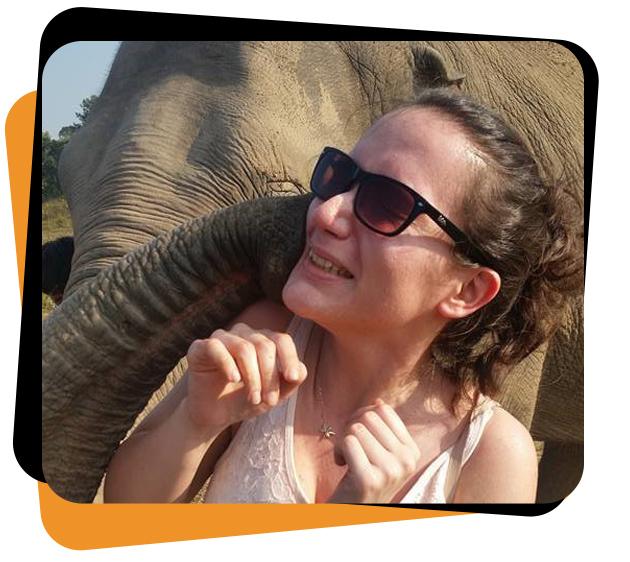 Idil elephant